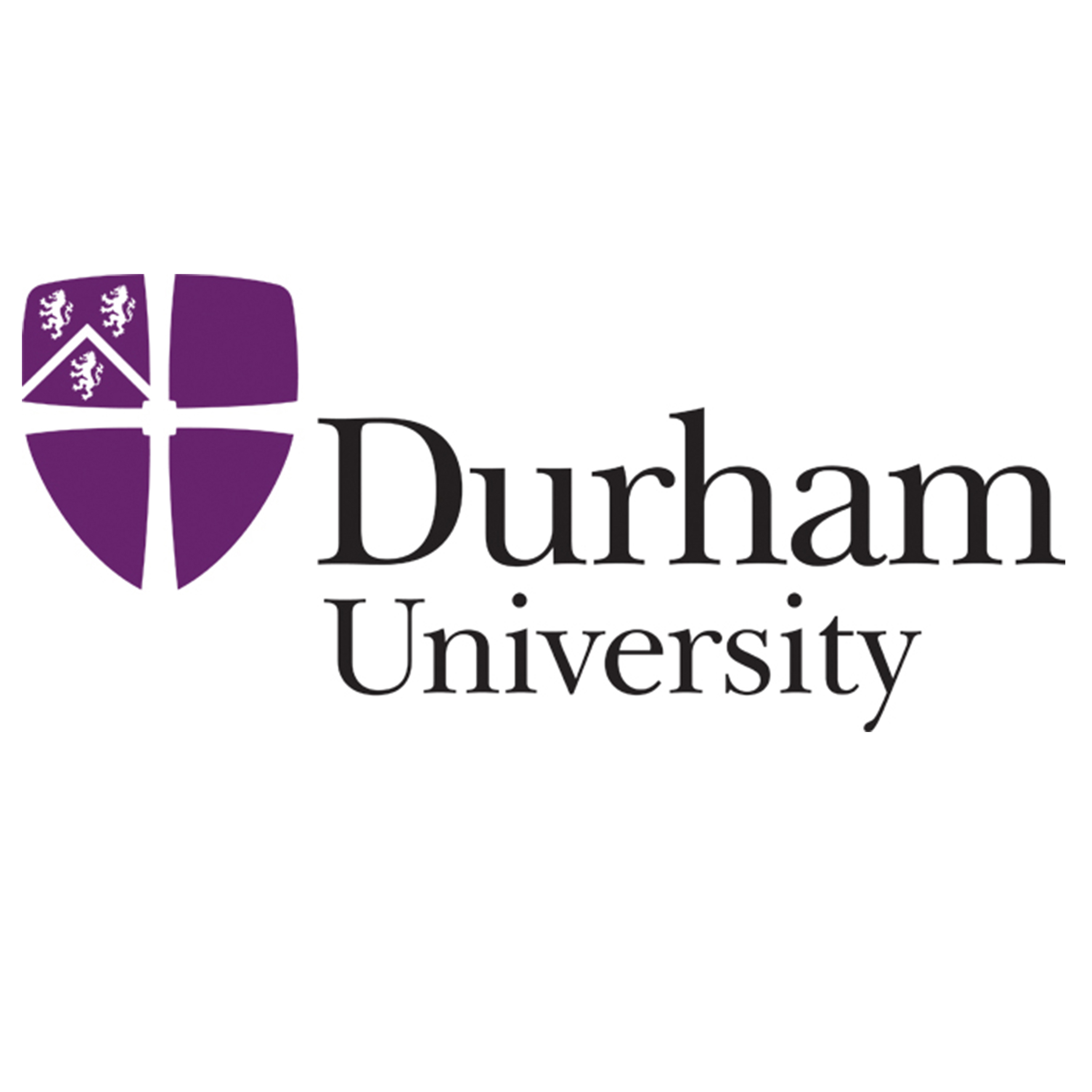 Durham University Templates for Dissertations, Theses, Essays ...